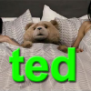 Seth MacFarlane's TED movie review by Adam Talley