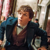 FANTASTIC BEASTS AND WHERE TO FIND THEM new trailer – J.K. Rowling's wizarding world expands