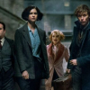 FANTASTIC BEASTS AND WHERE TO FIND THEM review by Rahul Vedantam