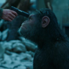 WAR FOR THE PLANET OF THE APES final trailer/poster – Woody Harrelson isn't monkeying around