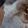 Netflix's OKJA review by Patrick Hendrickson – a CGI super-pig is the best actor in this film