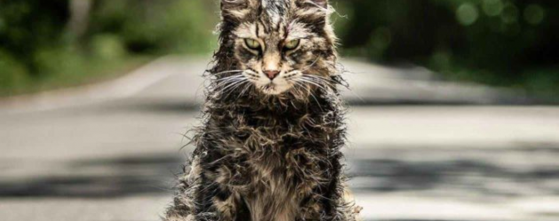 Stephen King's PET SEMATARY remake final trailer – who wants a cuddly kitten?