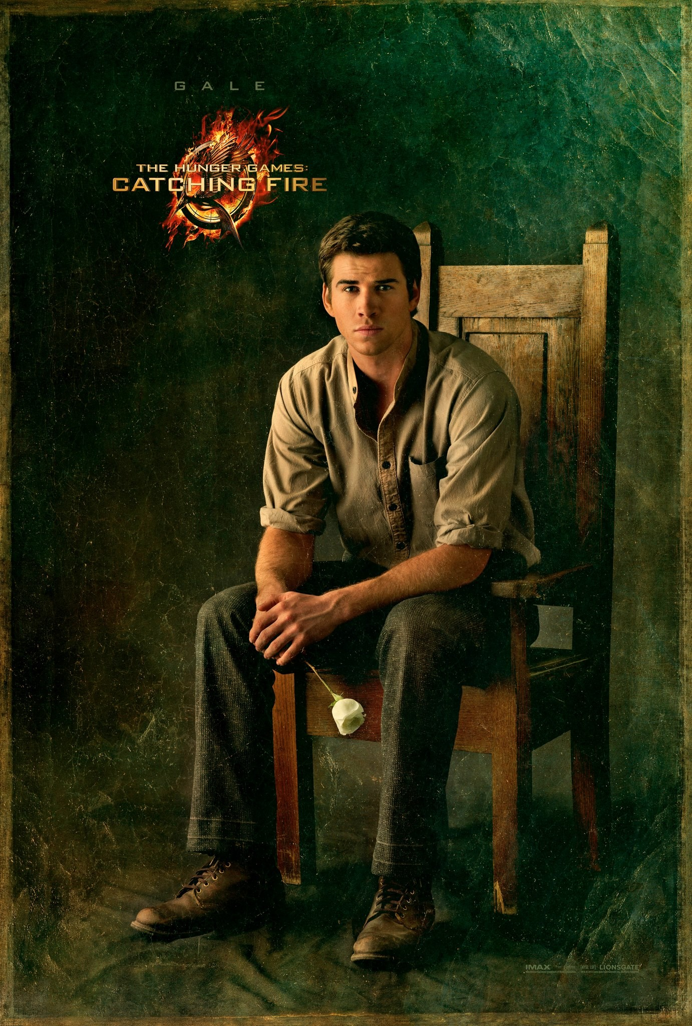 The Hunger Games Catching Fire - Poster - 012 - Gale