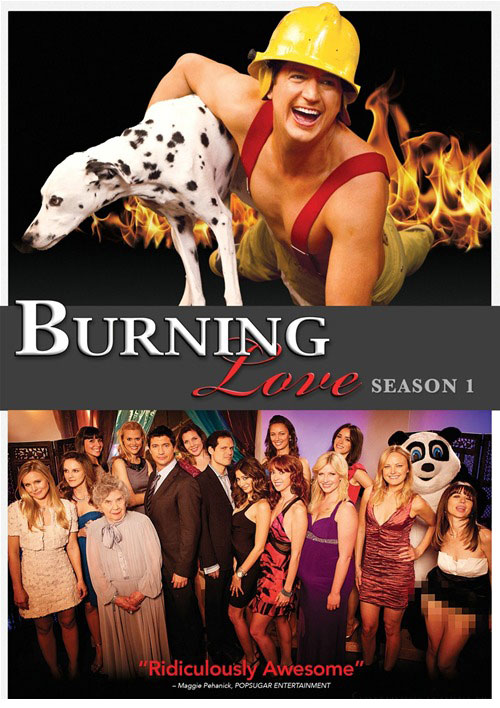 burninglove-dvd