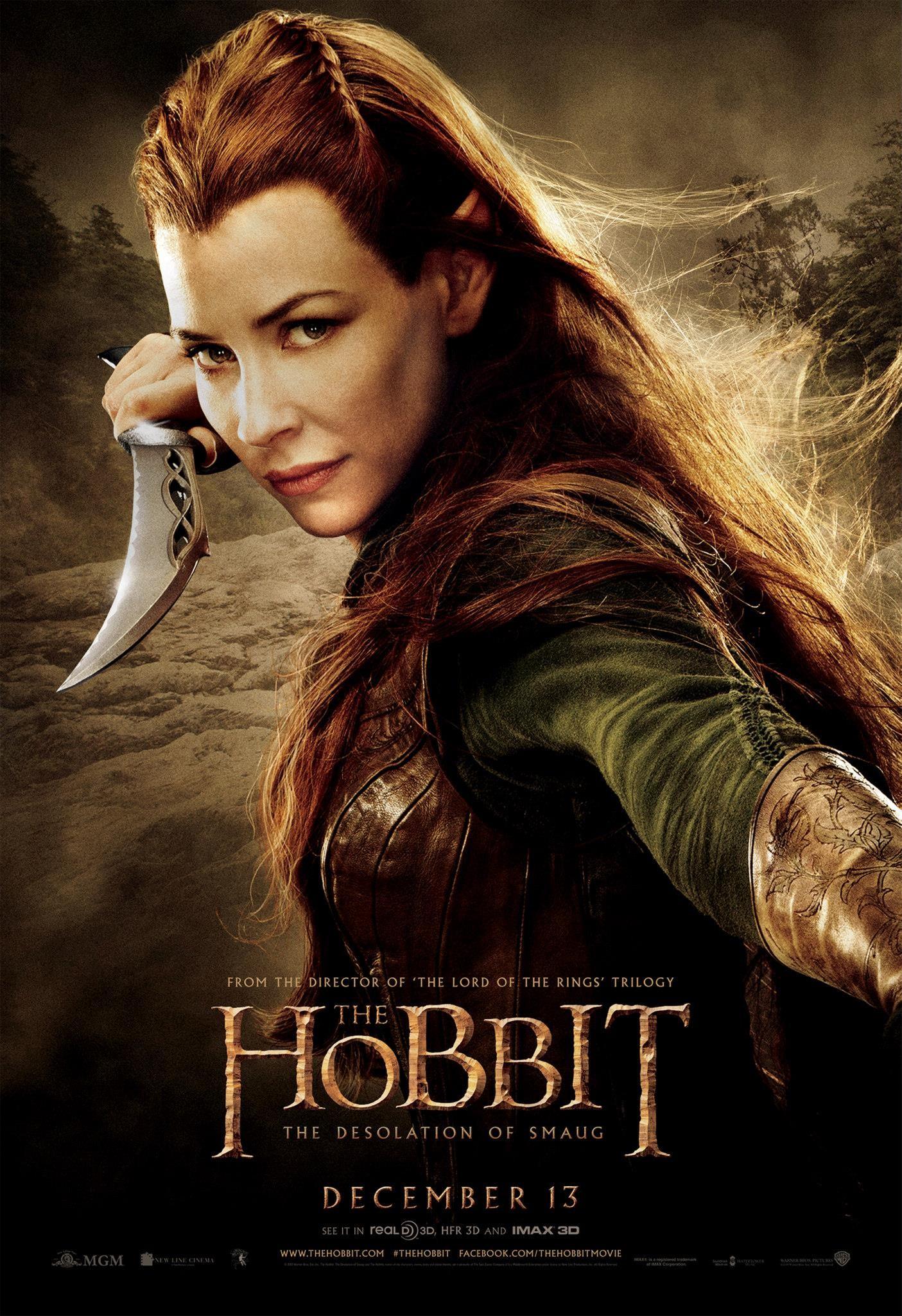 hobbitsmaug13